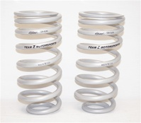 Team Z Stock Location Drag Springs for 1994-2004
